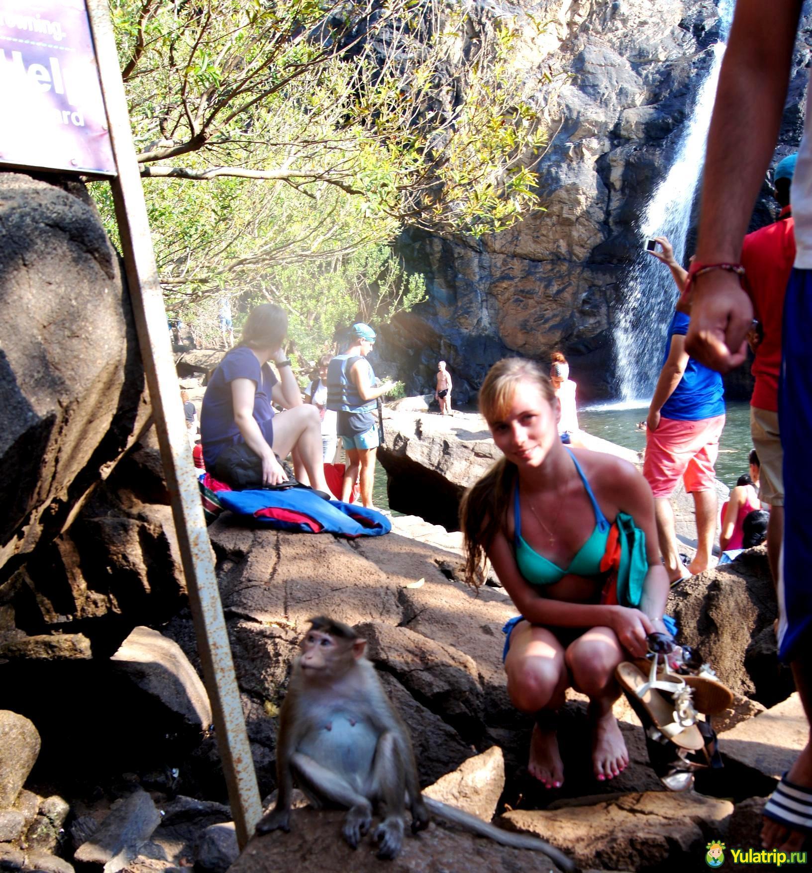водопад Дудхсагар Гоа Индия
