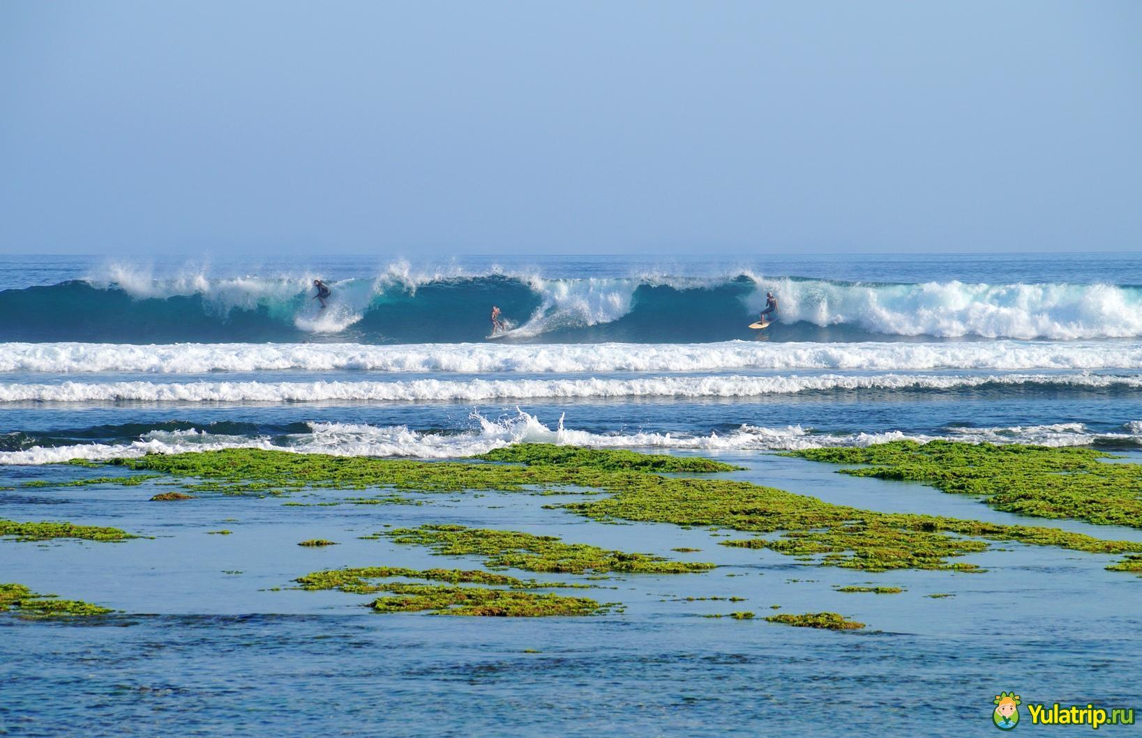 green bowl пляж бали