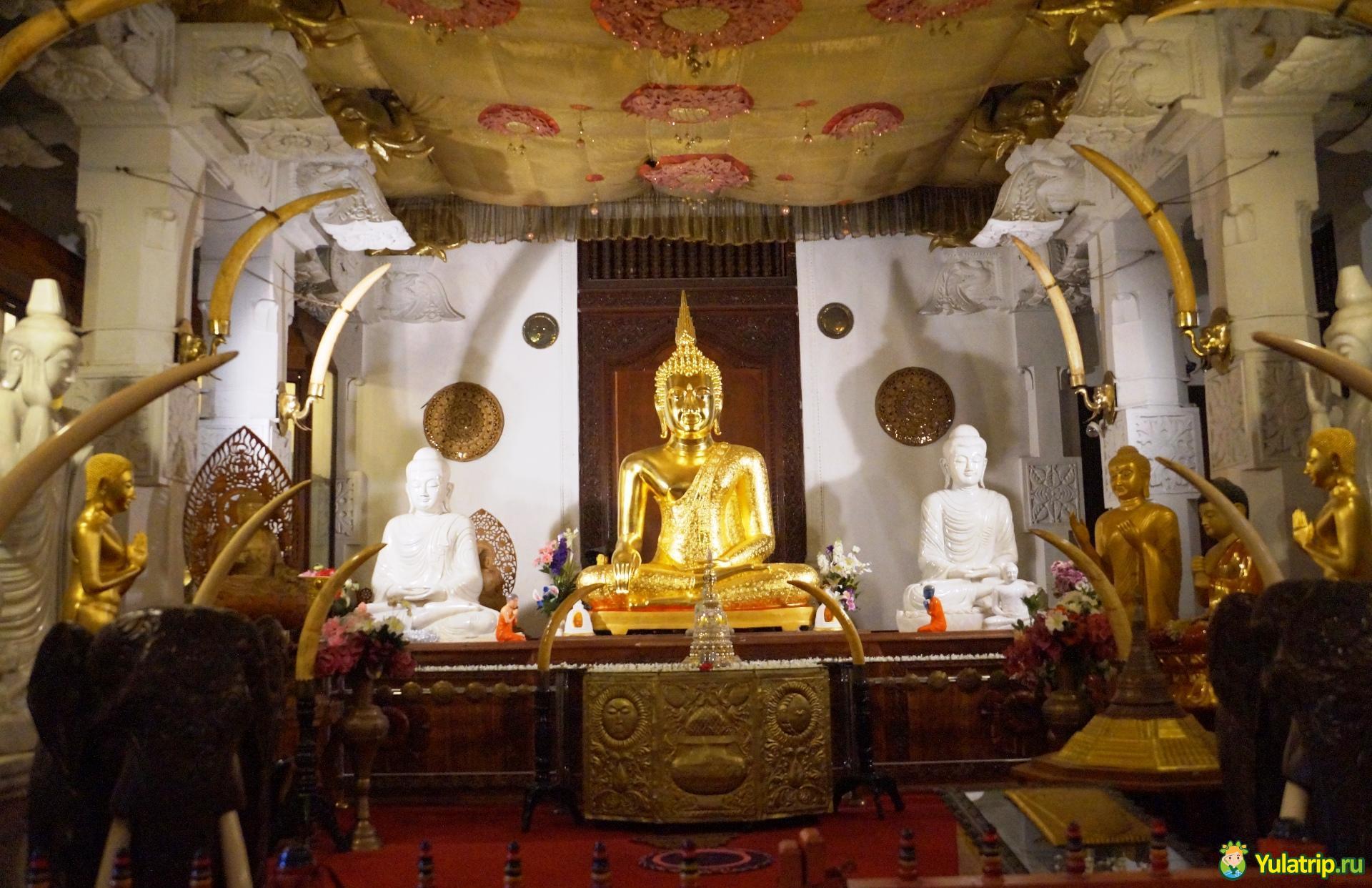 храм зуба будды шри ланка